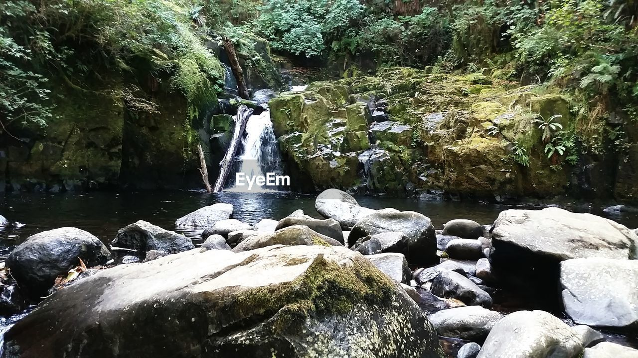 waterfall, water, rock - object, flowing water, motion, nature, long exposure, rock formation, beauty in nature, rock, river, outdoors, blurred motion, day, scenics, running water, no people, forest, tree, power in nature