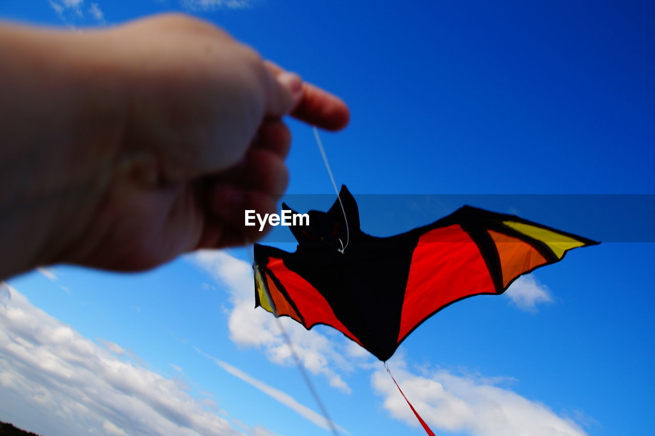 Human Hand Holding Kite In Shape Of Bat