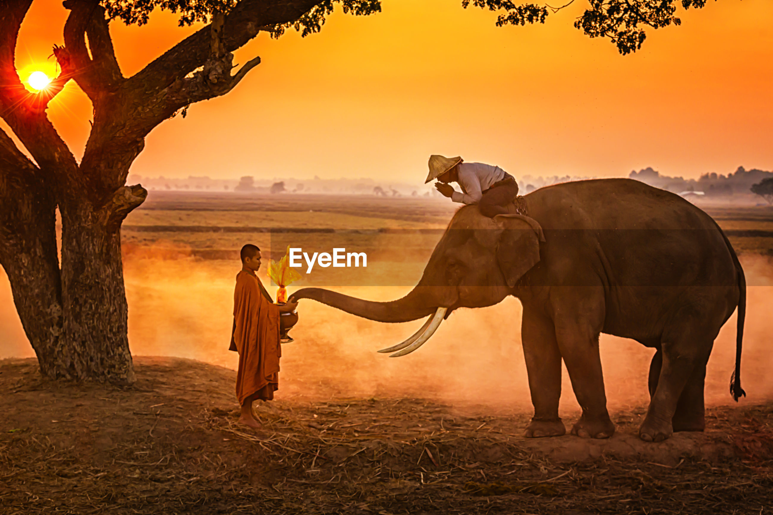 Man sitting on elephant while praying to monk by lake
