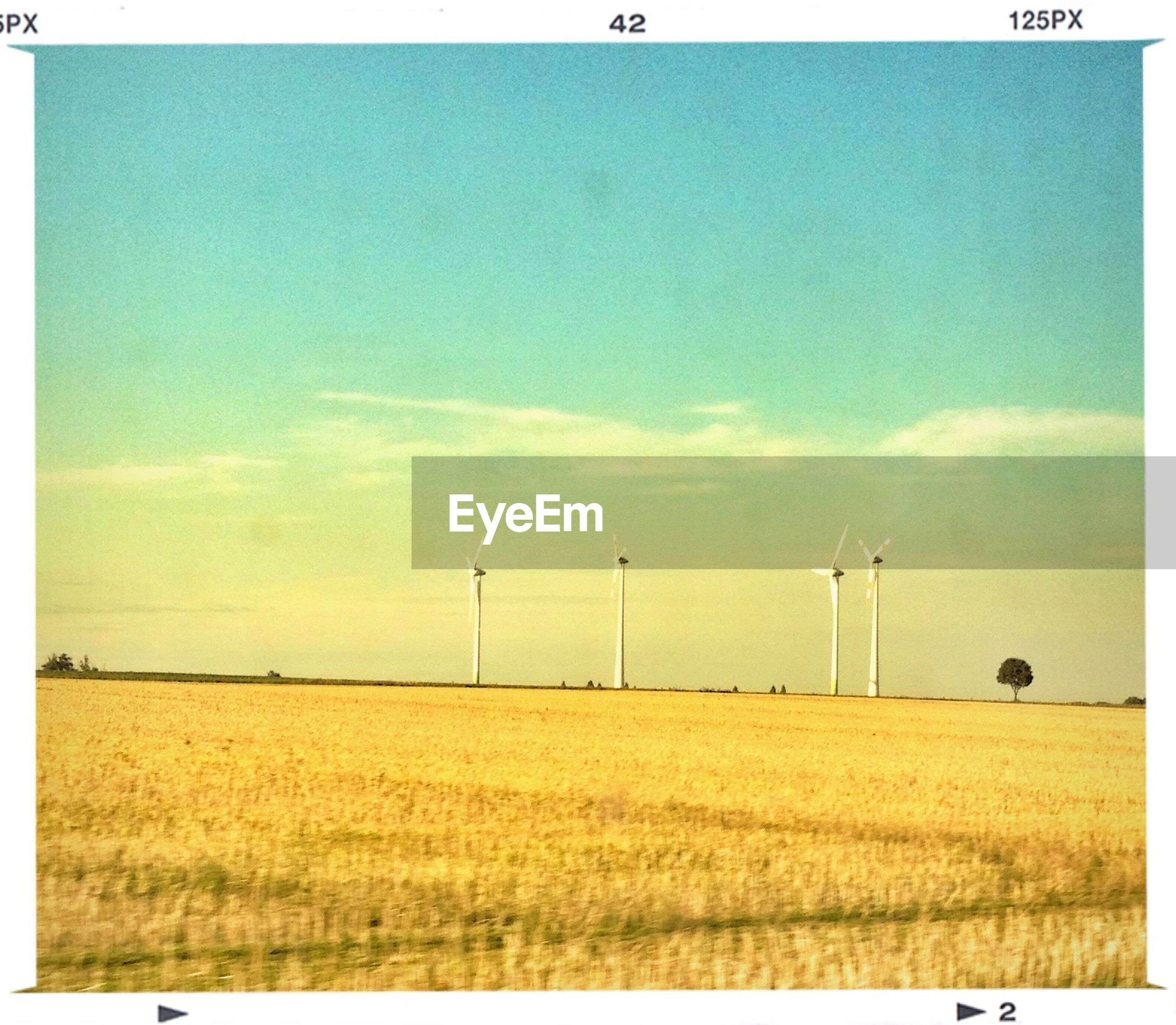 field, transfer print, sky, blue, landscape, tranquil scene, tranquility, auto post production filter, rural scene, grass, scenics, beauty in nature, agriculture, nature, copy space, farm, horizon over land, fence, clear sky, outdoors