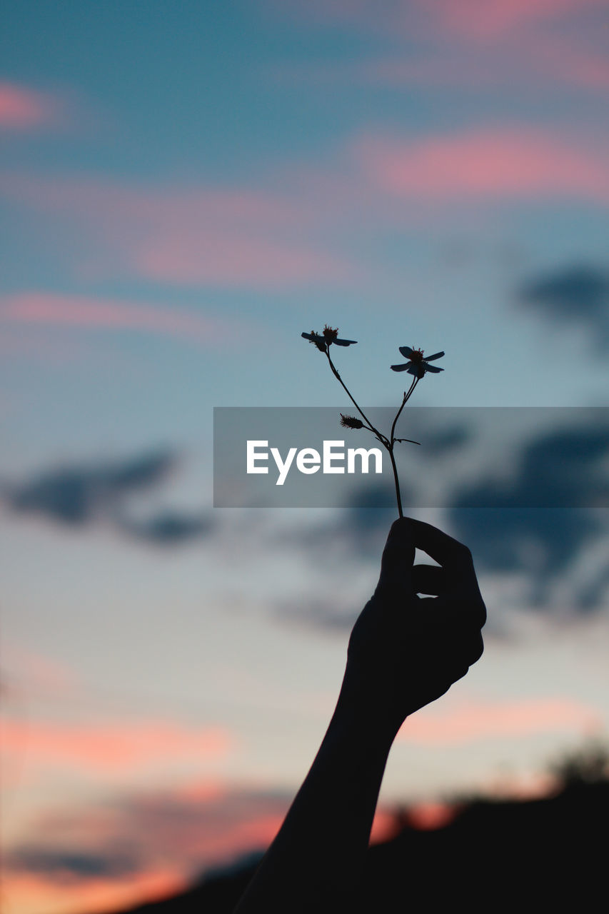 sky, sunset, human hand, silhouette, human body part, one person, real people, focus on foreground, nature, hand, holding, cloud - sky, lifestyles, beauty in nature, unrecognizable person, personal perspective, outdoors, orange color, close-up, finger
