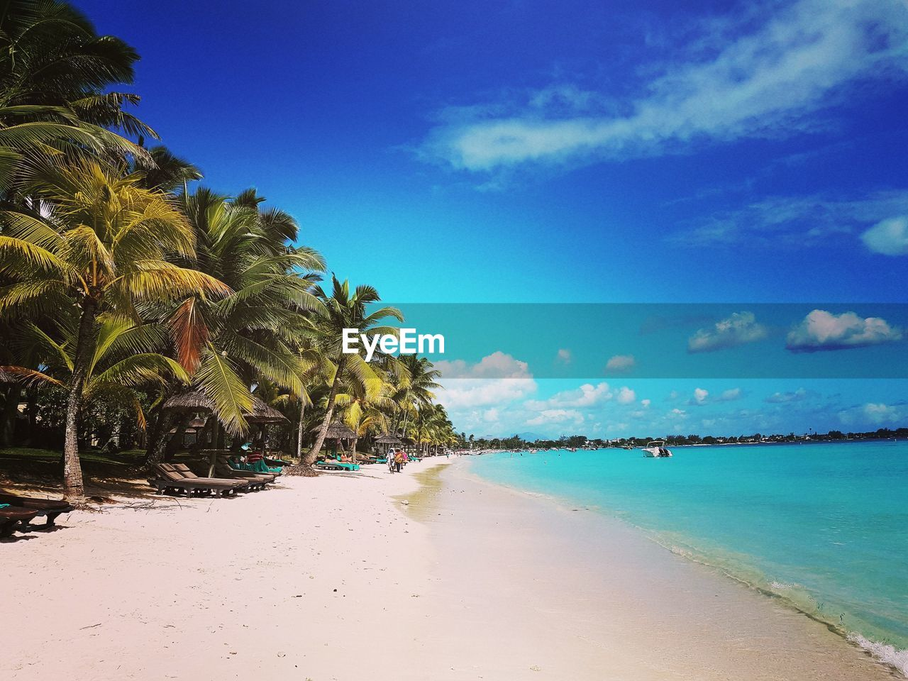 water, sky, sea, beach, land, tree, tropical climate, palm tree, beauty in nature, scenics - nature, tranquility, tranquil scene, blue, plant, nature, cloud - sky, sand, incidental people, day, outdoors, coconut palm tree, turquoise colored, tropical tree