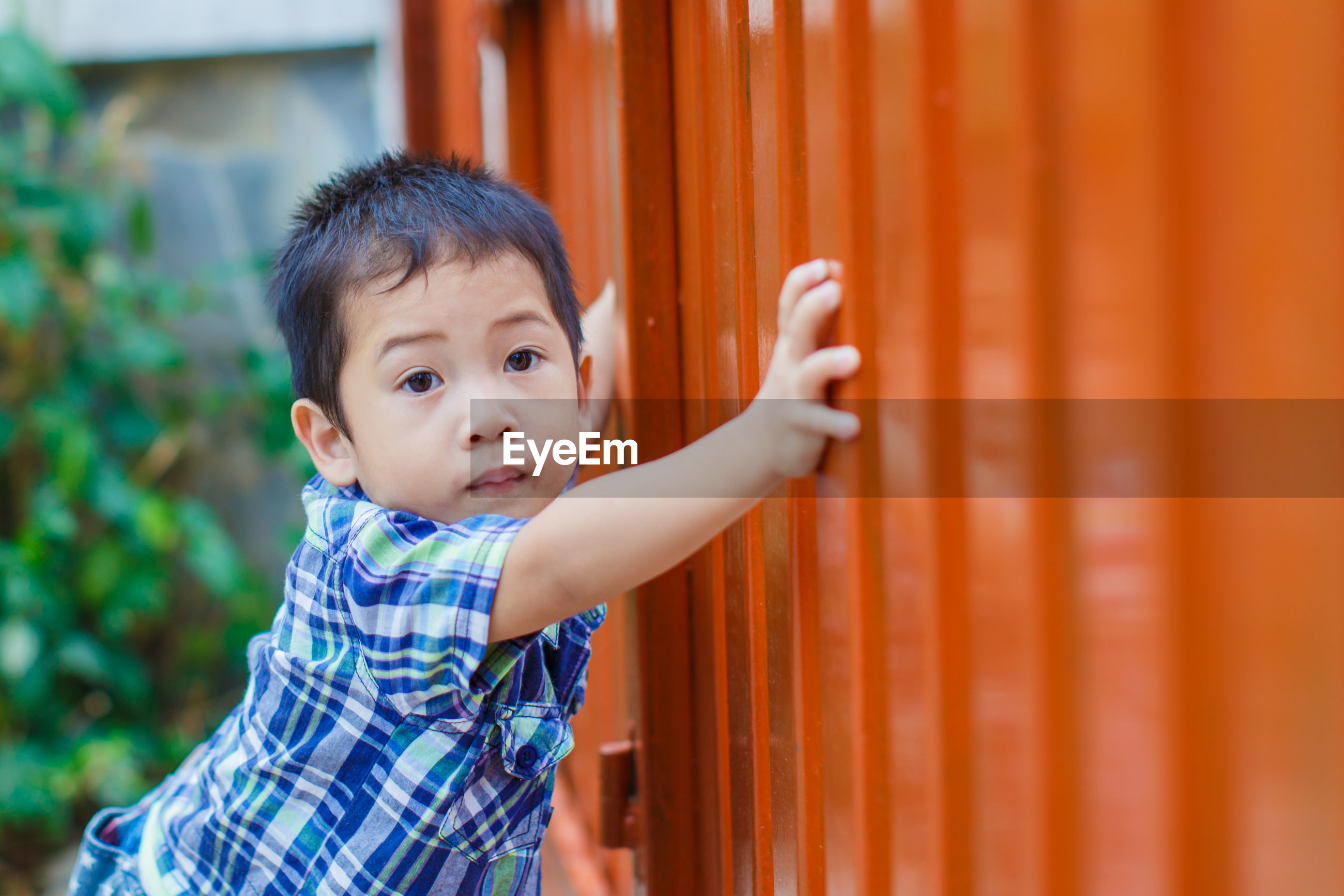 Portrait of boy standing by gate