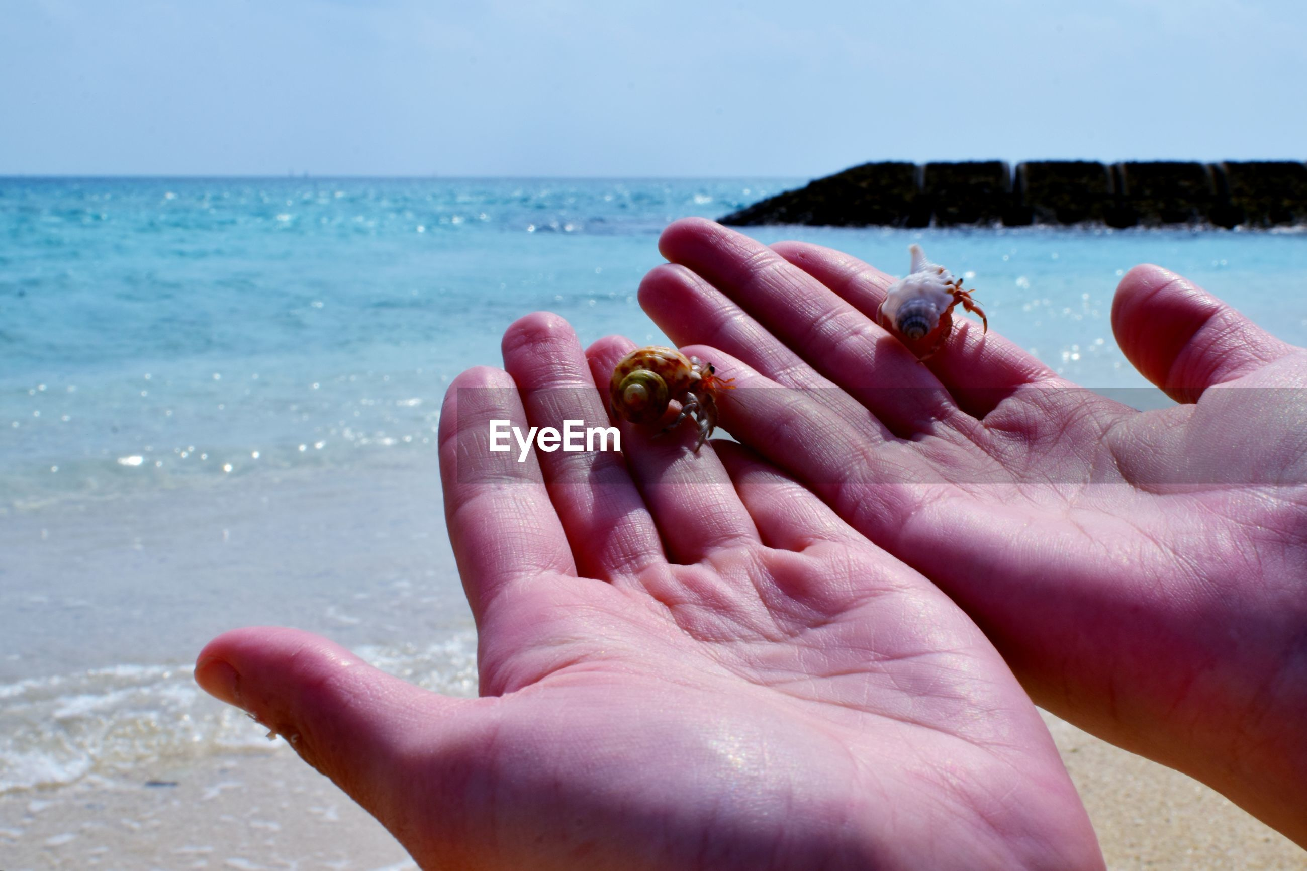 Cropped image of hands on sea shore