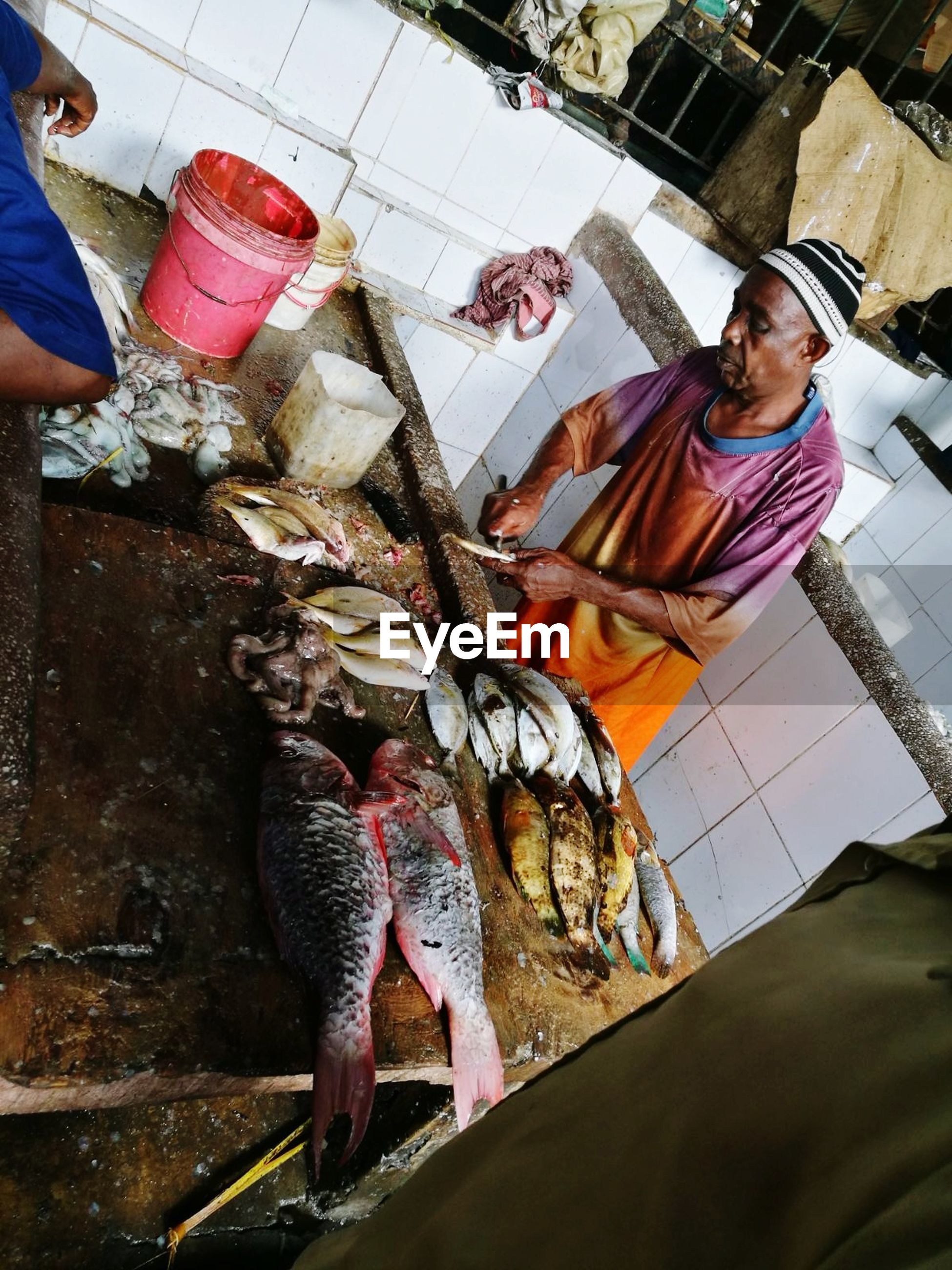 vertebrate, fish, food and drink, food, seafood, one person, freshness, raw food, retail, real people, indoors, healthy eating, wellbeing, market, holding, for sale, preparing food, fish market, catch of fish, fishing industry