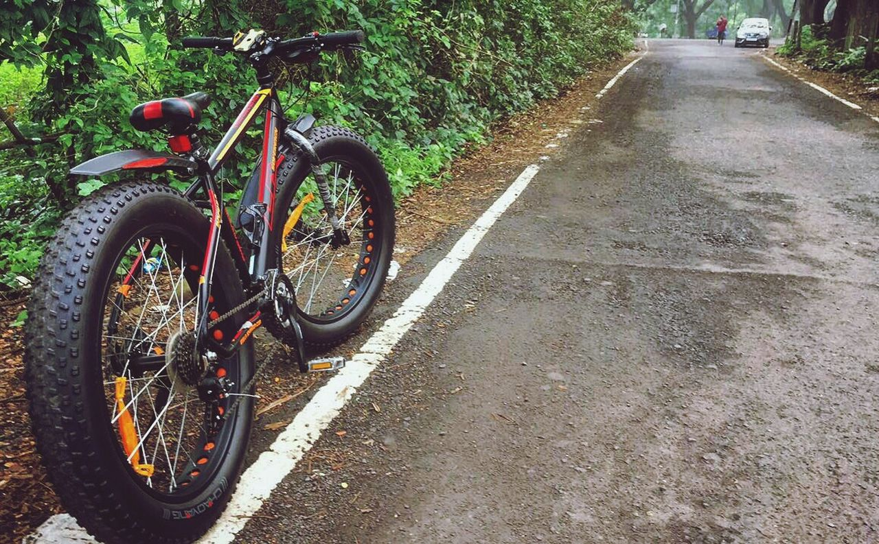 bicycle, transportation, mode of transport, land vehicle, stationary, day, outdoors, bicycle rack, road, no people, tree, nature