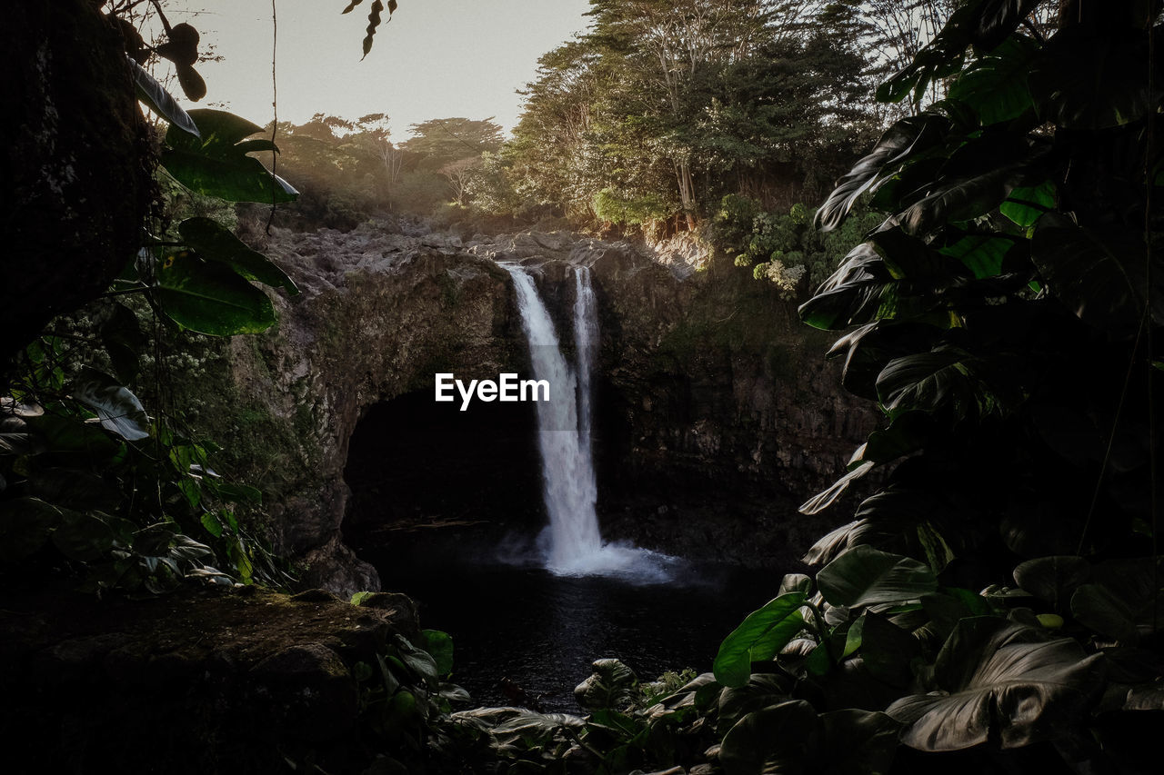 waterfall, water, motion, long exposure, flowing water, plant, tree, beauty in nature, scenics - nature, nature, blurred motion, rock, forest, land, rock - object, solid, flowing, environment, no people, outdoors, power in nature, falling water, rainforest