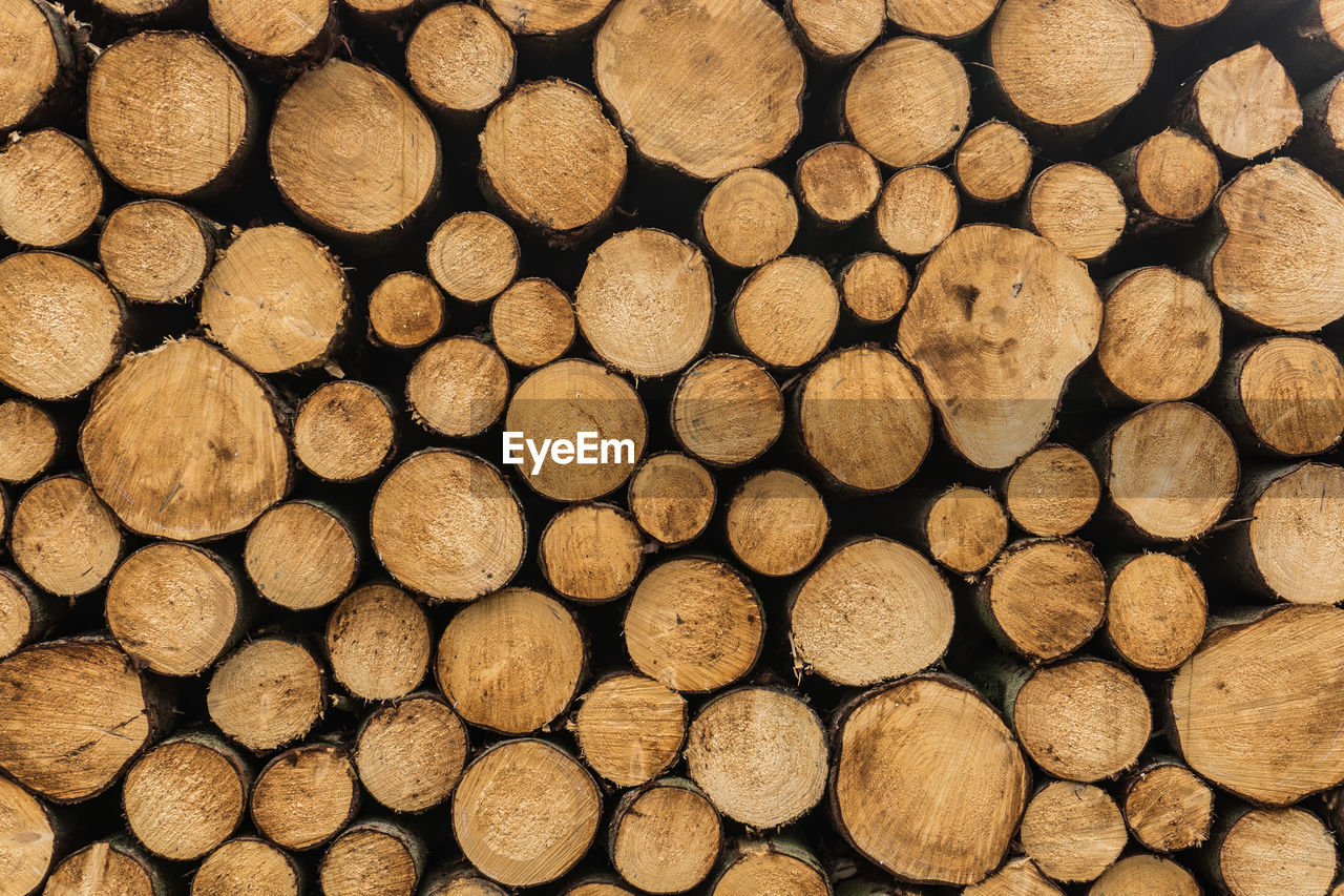 log, timber, full frame, wood, firewood, backgrounds, lumber industry, large group of objects, stack, forest, tree, wood - material, abundance, no people, deforestation, fuel and power generation, heap, nature, brown, fossil fuel, woodpile, outdoors