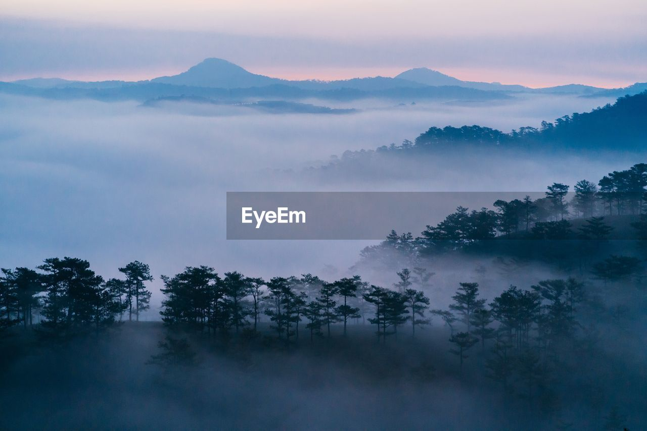 Trees and mountain against sky during foggy sunset