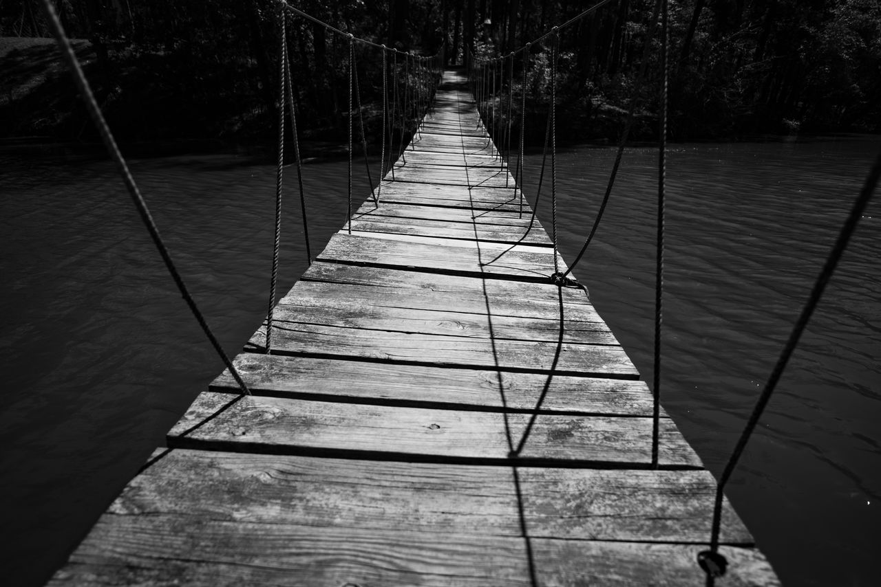the way forward, tree, direction, nature, wood - material, day, no people, footpath, diminishing perspective, outdoors, plant, water, pier, rope, land, vanishing point, sunlight, narrow, footbridge, wood paneling, long