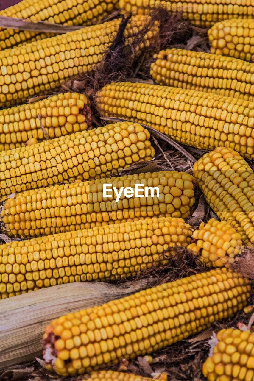 Close-Up Of Corns