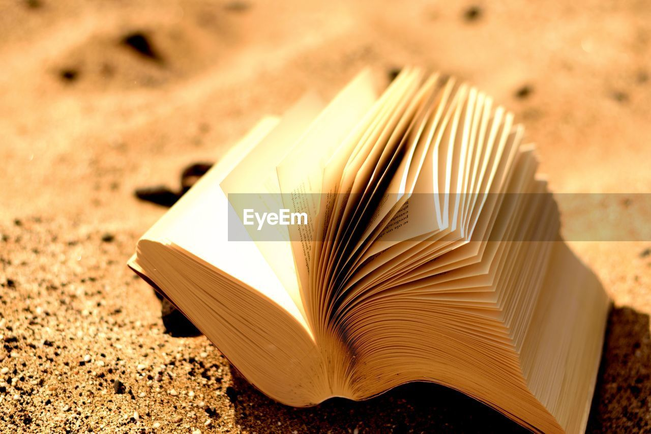publication, education, book, page, open, close-up, no people, still life, paper, focus on foreground, wisdom, expertise, selective focus, high angle view, indoors, literature, land, sunlight, nature, white color, hardcover book, blank