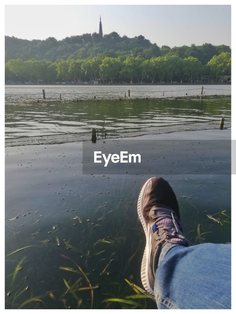 water, low section, shoe, human body part, human leg, real people, nature, body part, lake, day, auto post production filter, transfer print, one person, personal perspective, lifestyles, plant, relaxation, leisure activity, outdoors, jeans