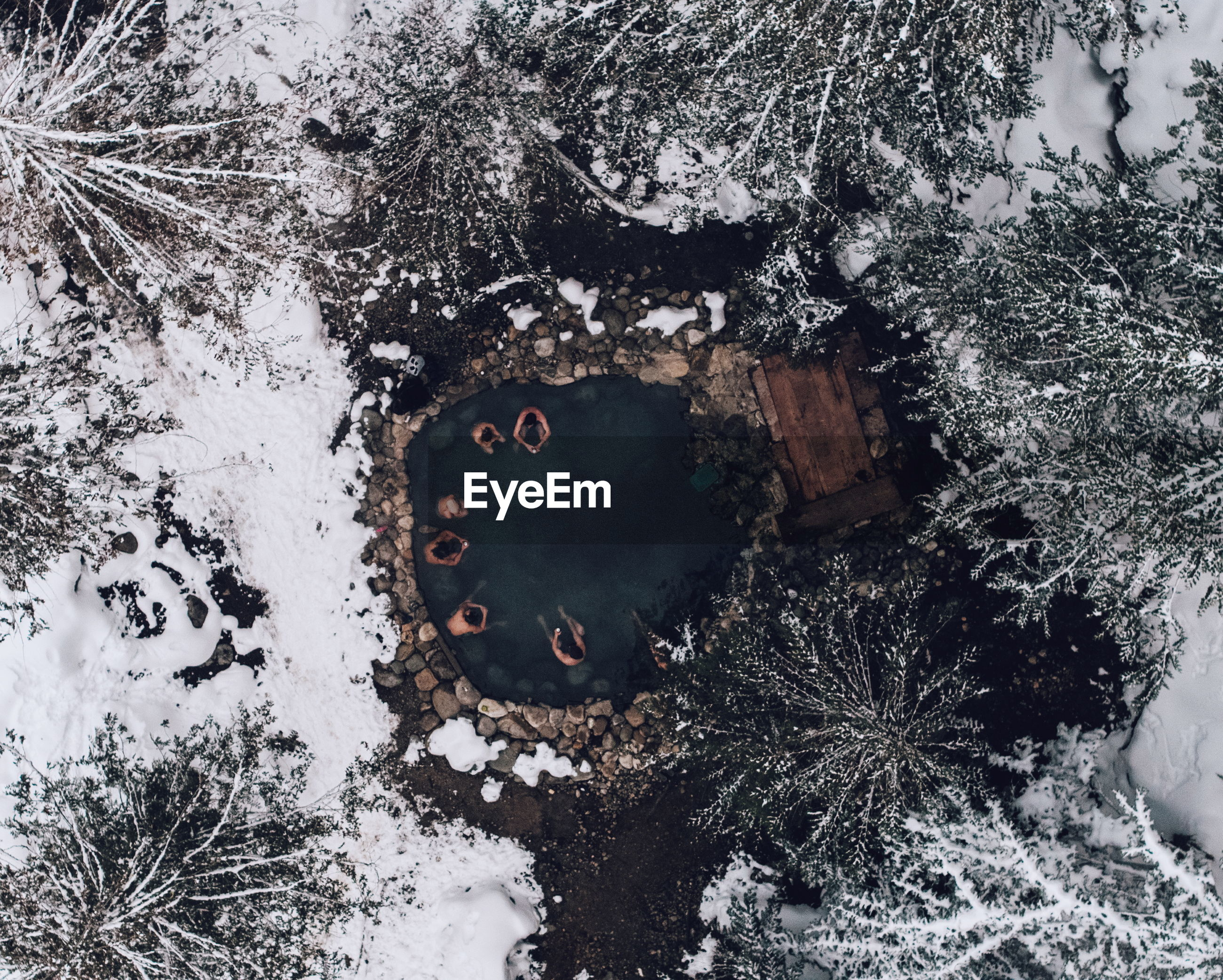 High angle view of people in hot spring at forest