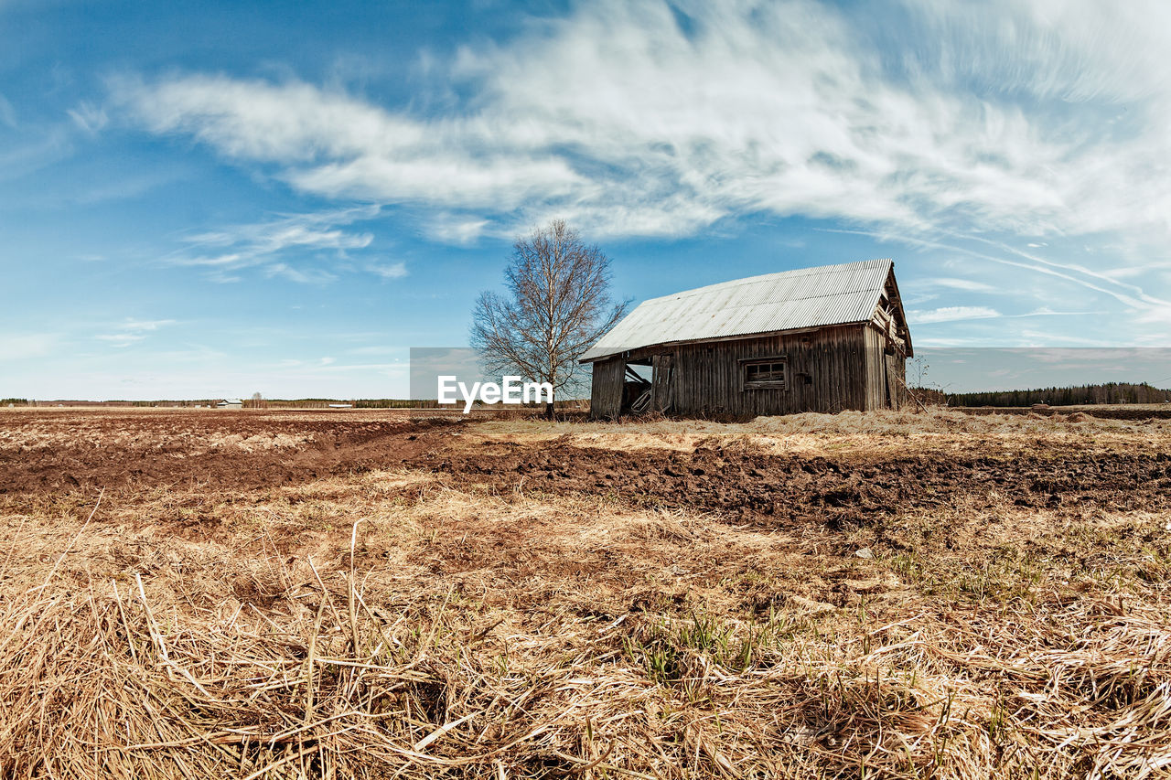 field, land, sky, landscape, built structure, architecture, building exterior, agricultural building, plant, cloud - sky, nature, farm, abandoned, environment, rural scene, barn, agriculture, day, no people, brown, outdoors, deterioration