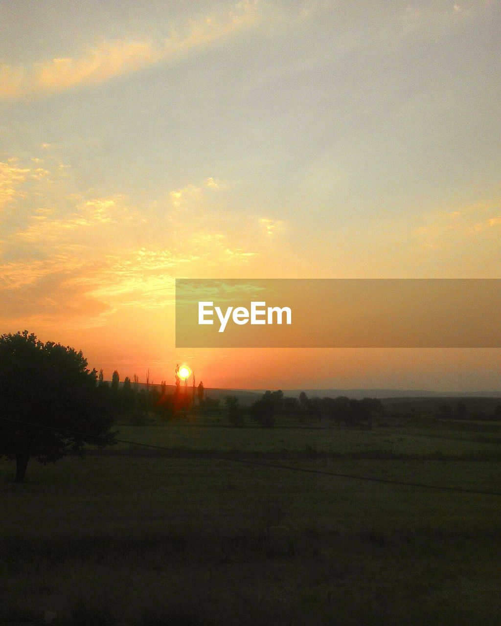 sunset, field, sun, landscape, orange color, nature, beauty in nature, scenics, tranquility, no people, tranquil scene, sky, silhouette, yellow, grass, outdoors, tree