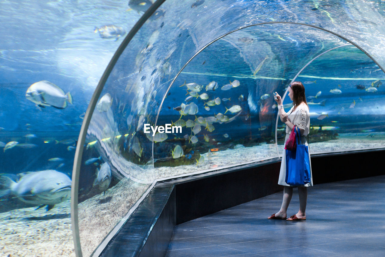 full length, water, aquarium, sea, tank, standing, glass - material, one person, rear view, transparent, animals in captivity, nature, adult, fish, casual clothing, animals in the wild, women, watching, outdoors