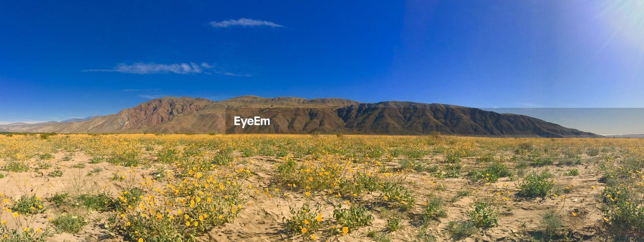 sky, beauty in nature, tranquil scene, scenics - nature, tranquility, mountain, landscape, blue, plant, environment, land, nature, non-urban scene, no people, sunlight, day, remote, idyllic, mountain range, outdoors, arid climate, formation