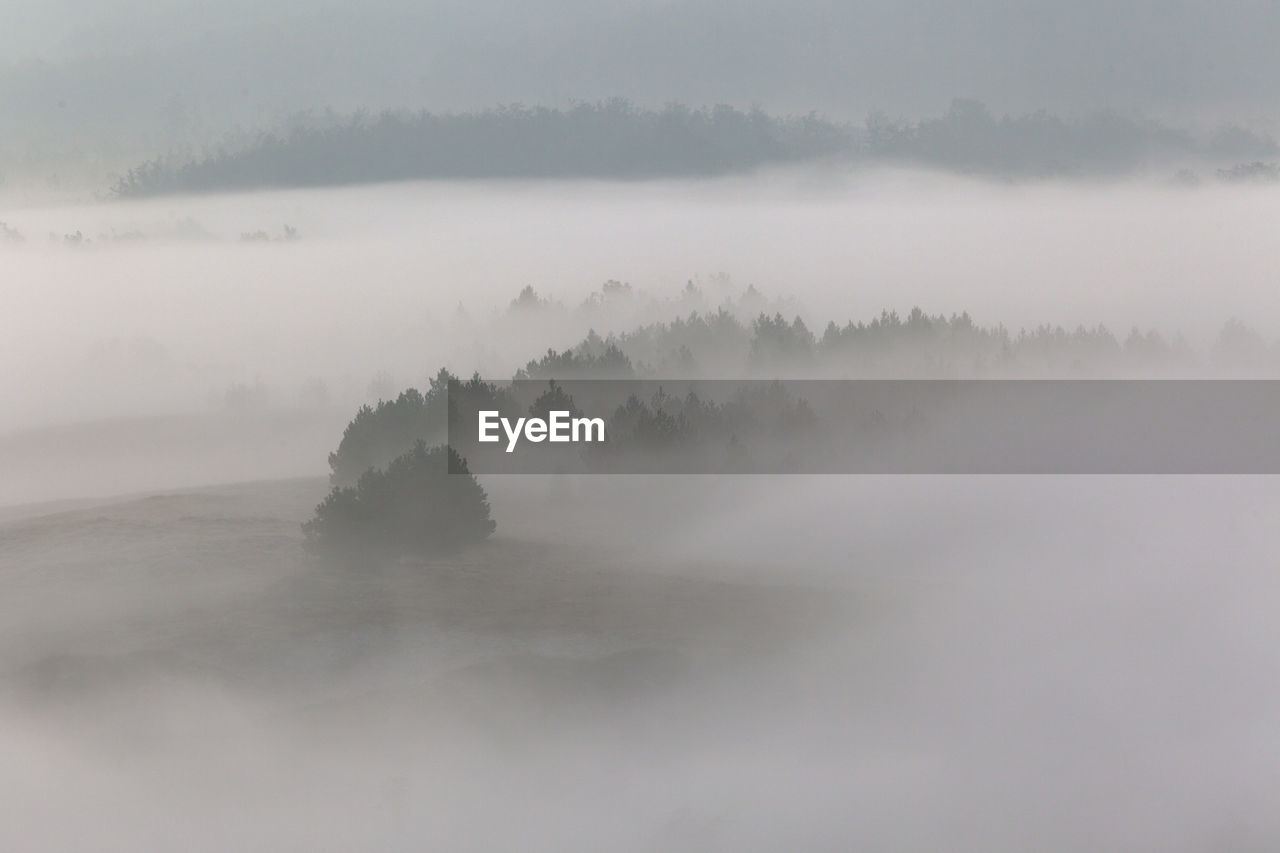 SCENIC VIEW OF FOG COVERED WITH SNOW