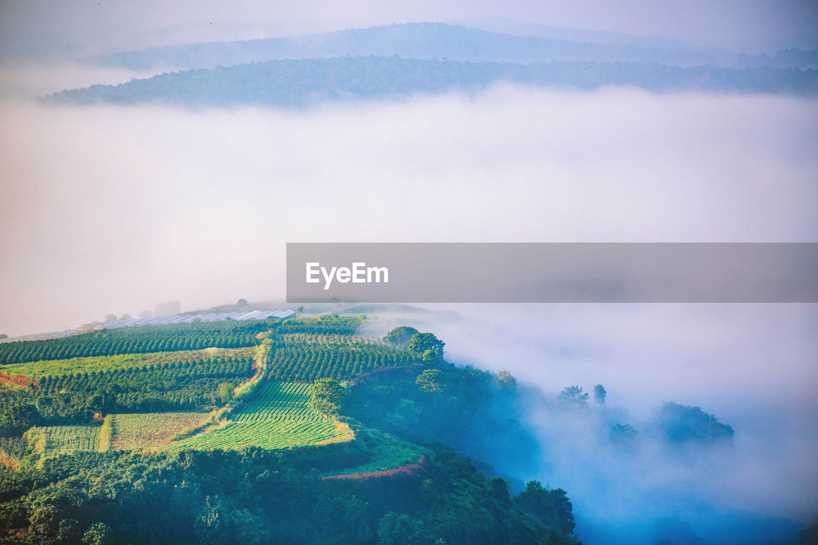 SCENIC VIEW OF FOG OVER LAND
