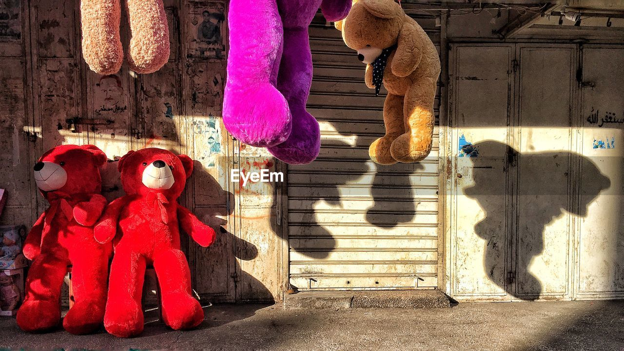 shadow, sunlight, day, outdoors, hanging, no people, red, architecture, animal themes, mammal