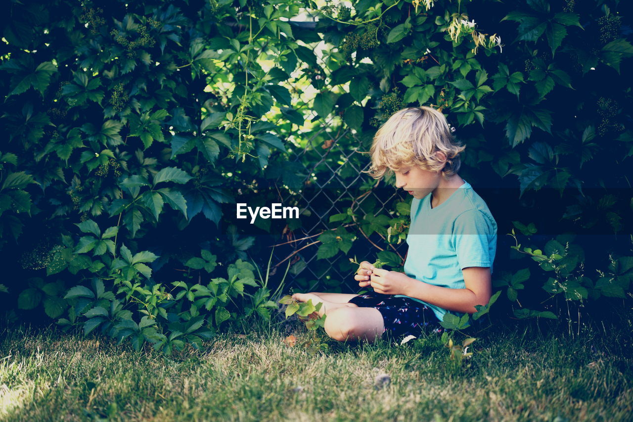 Boy Sitting On Grass Against Trees