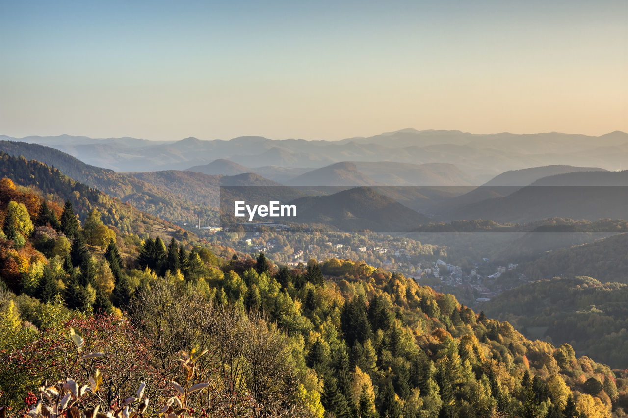 mountain, beauty in nature, scenics - nature, plant, tree, tranquility, tranquil scene, sky, environment, landscape, non-urban scene, no people, mountain range, nature, idyllic, growth, remote, day, copy space, high angle view, outdoors