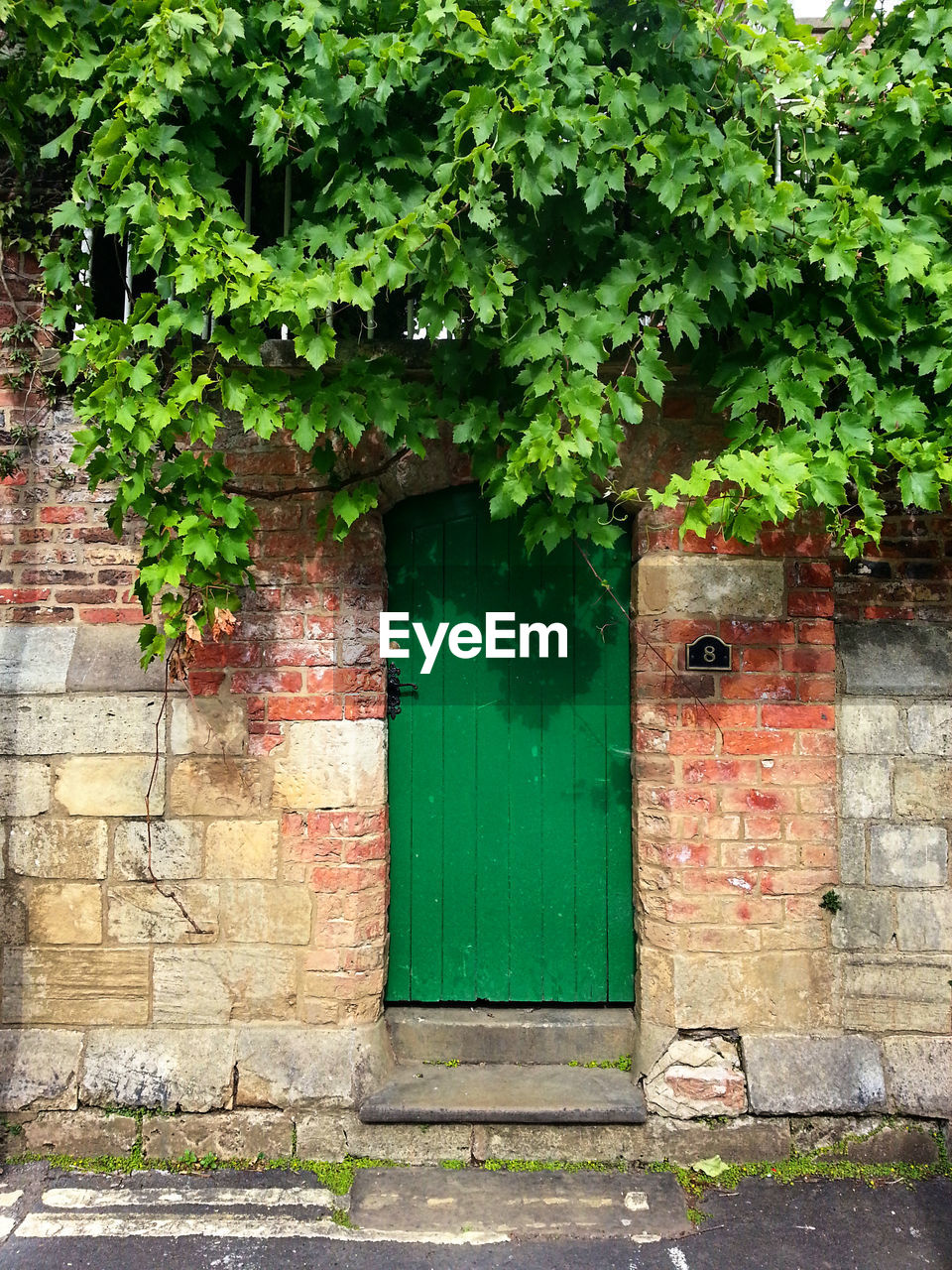 door, architecture, built structure, green color, building exterior, green, outdoors, no people, day, red, plant
