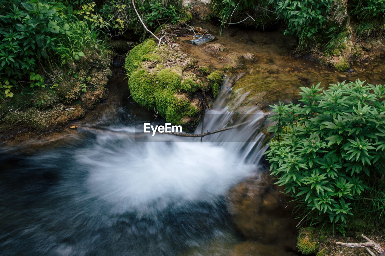 plant, water, motion, forest, flowing water, nature, blurred motion, waterfall, rock, beauty in nature, long exposure, tree, solid, rock - object, scenics - nature, no people, flowing, land, growth, outdoors, rainforest, stream - flowing water, falling water, running water, power in nature