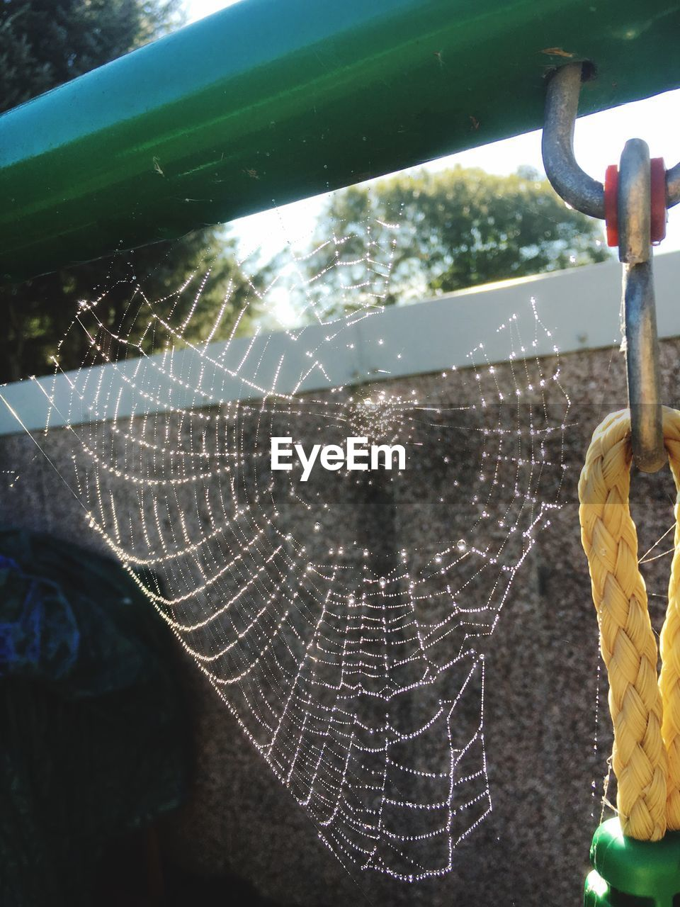 spider web, close-up, no people, focus on foreground, outdoors, day, nature, web, beauty in nature, animal themes, freshness