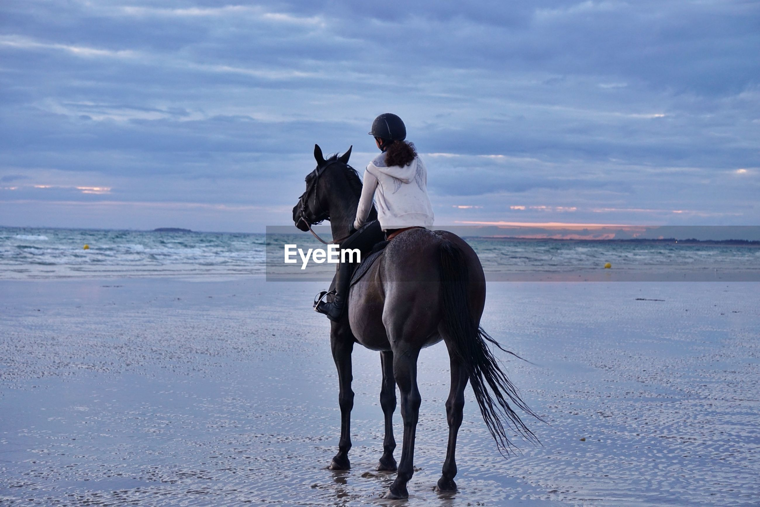Rear view of horse ride on beach