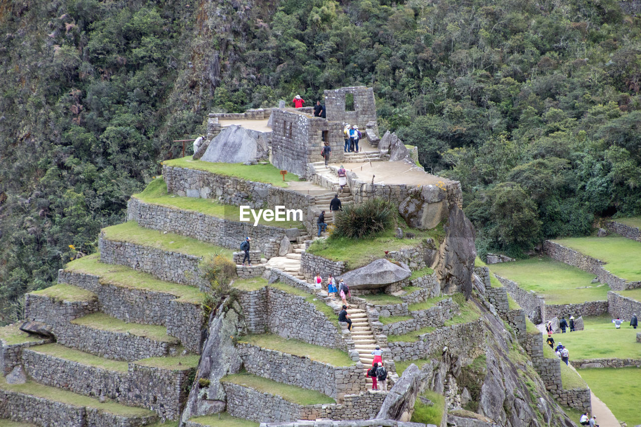plant, tree, day, nature, staircase, history, incidental people, architecture, group of people, the past, travel, steps and staircases, tourism, green color, travel destinations, high angle view, built structure, outdoors, solid, women, ancient civilization, stone wall