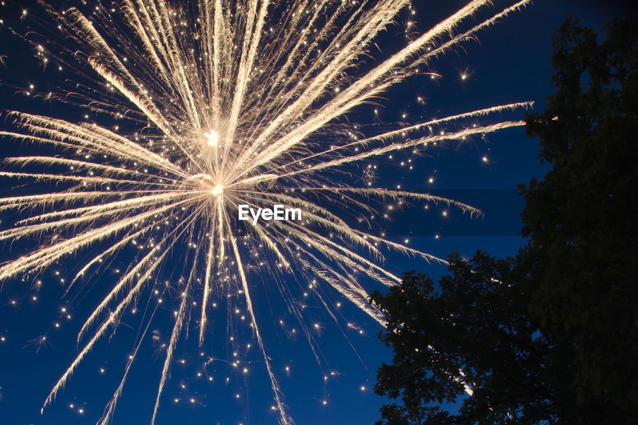 illuminated, low angle view, firework, night, celebration, arts culture and entertainment, motion, firework display, sky, event, exploding, long exposure, glowing, nature, tree, no people, light, firework - man made object, plant, blurred motion, outdoors, sparks, bright