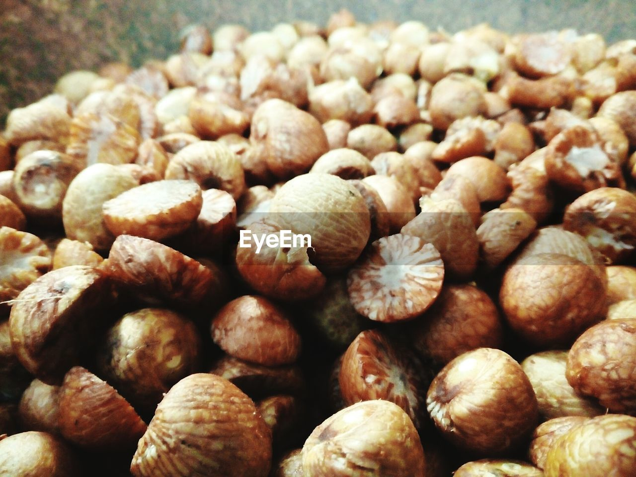 food and drink, nut - food, food, close-up, no people, nutshell, healthy eating, day, acorn, freshness, nature, indoors