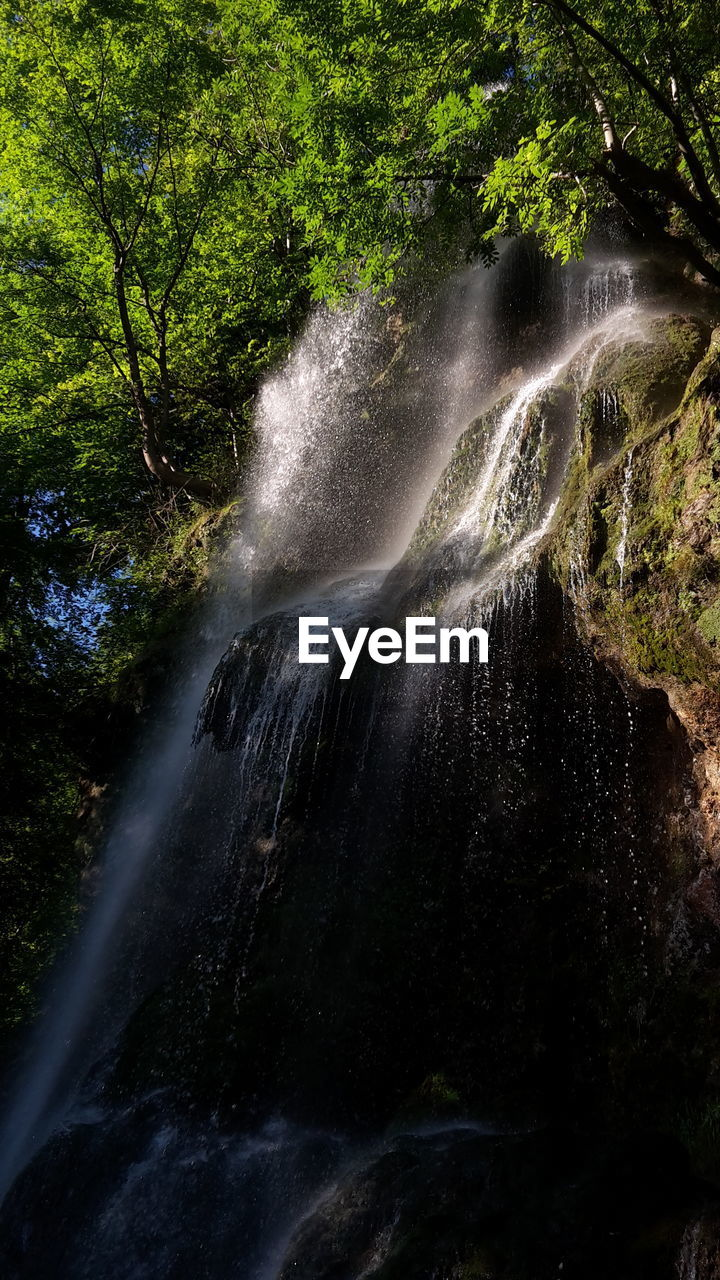 tree, scenics - nature, beauty in nature, forest, plant, waterfall, blurred motion, water, motion, long exposure, nature, flowing water, no people, land, rock, rock - object, outdoors, environment, day, flowing, power in nature, falling water, rainforest