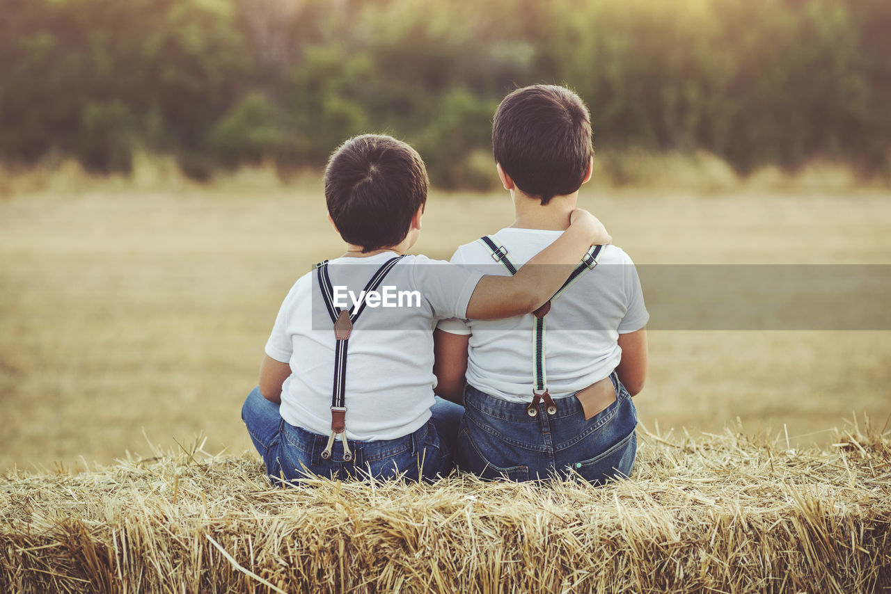 Rear View Of Brothers Sitting On Hay Bale