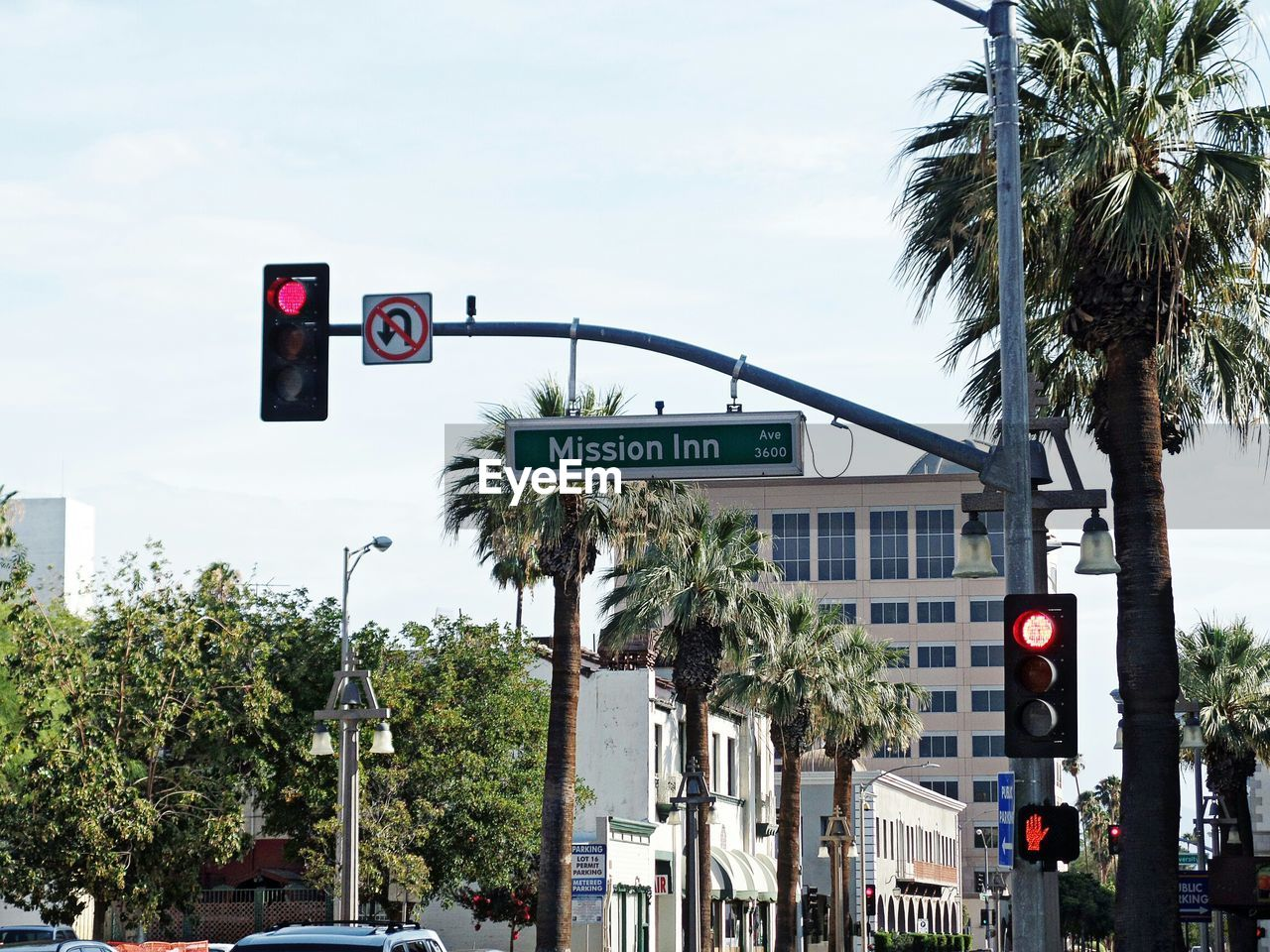 road sign, tree, direction, guidance, stoplight, communication, palm tree, day, one way, outdoors, architecture, sky, street name sign, city, no people