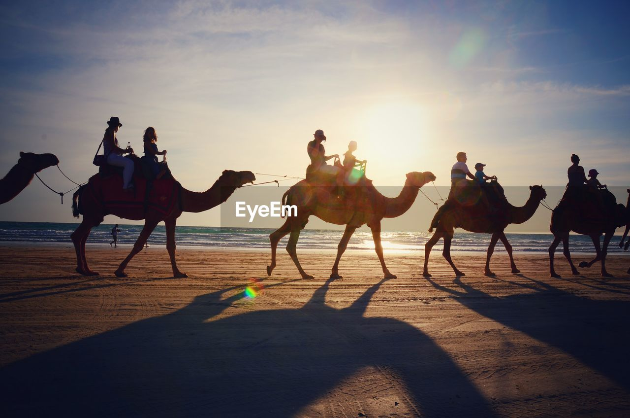 People Riding Camel At Beach Against Sky During Sunset