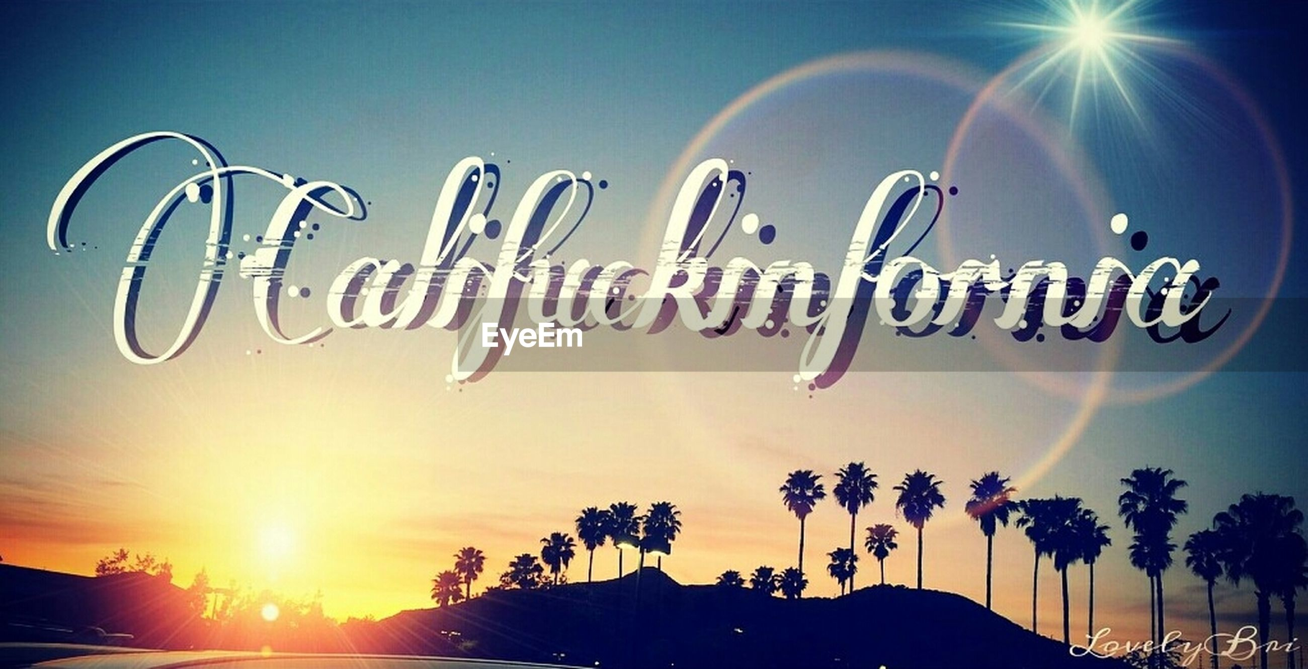 sun, low angle view, sunbeam, sky, lens flare, sunlight, sunset, silhouette, blue, tranquility, clear sky, nature, outdoors, bright, beauty in nature, no people, scenics, sunny, tree, palm tree