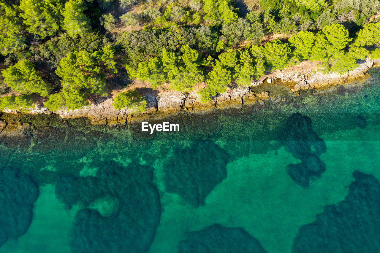 Aerial view of a forested coast of the pasman island, croatia