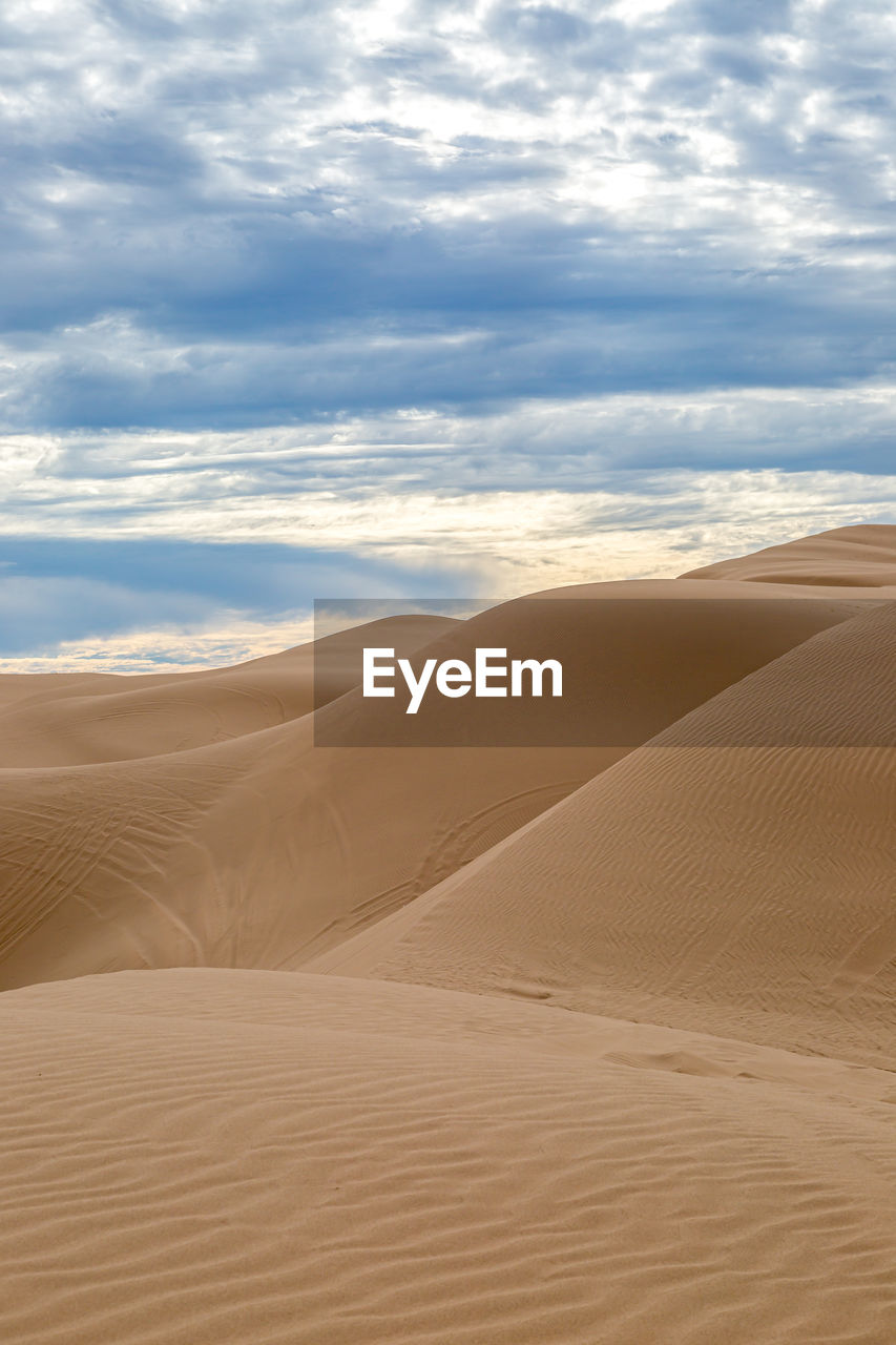 Looking out over the vast algodones sand dunes in california