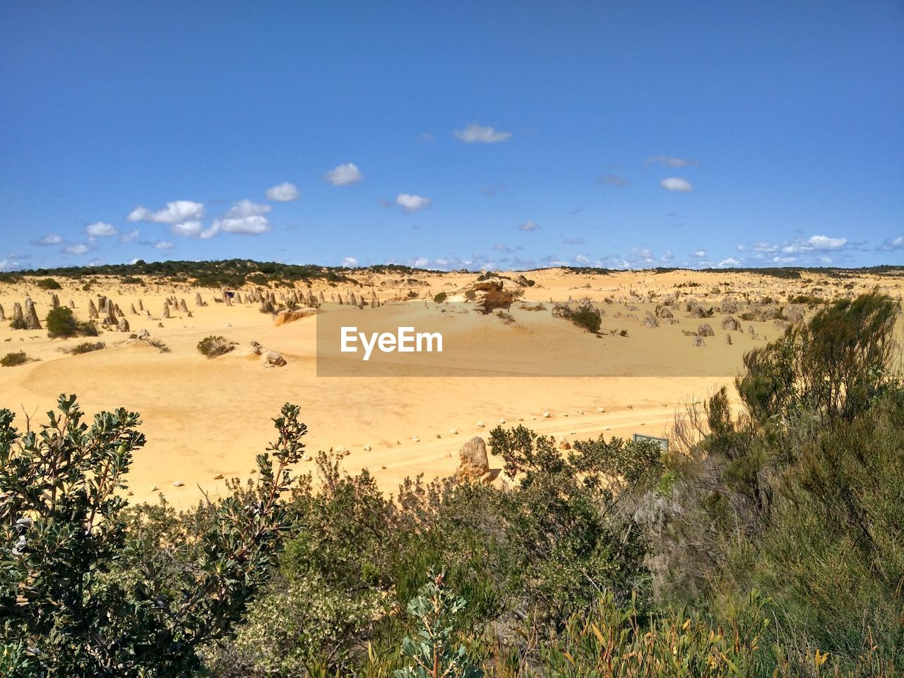 landscape, nature, tranquil scene, blue, beauty in nature, tree, day, scenics, sky, tranquility, outdoors, no people, arid climate, desert, sand dune
