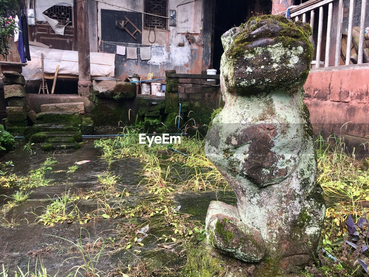 built structure, architecture, building exterior, no people, day, old, plant, abandoned, nature, moss, building, water, outdoors, art and craft, run-down, weathered, representation, obsolete, decline, deterioration, ruined