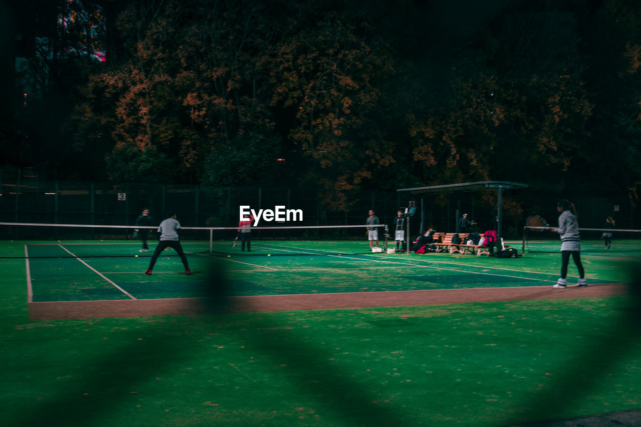 sport, group of people, real people, plant, playing, men, crowd, tree, leisure activity, grass, large group of people, green color, nature, day, togetherness, lifestyles, team sport, outdoors, healthy lifestyle