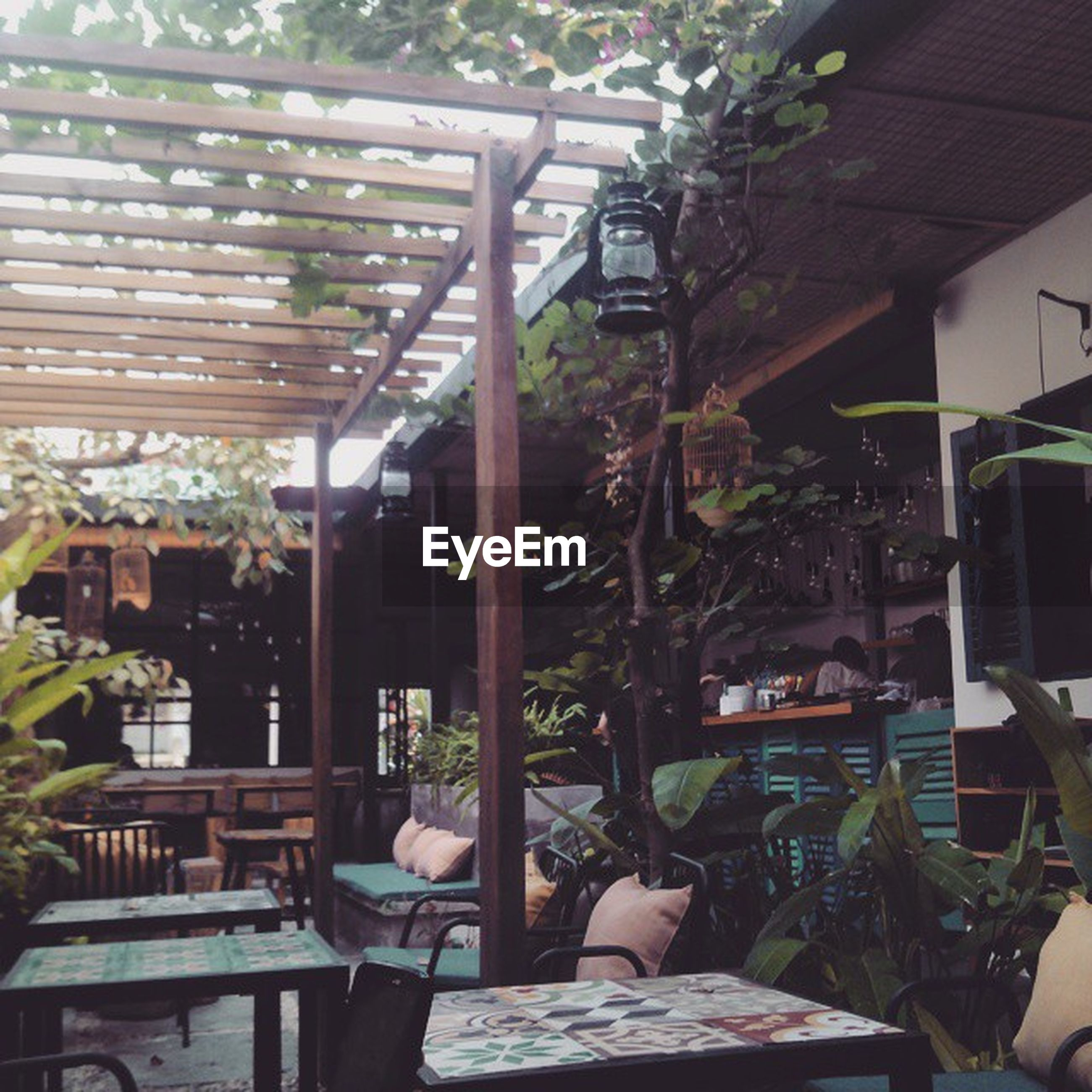 indoors, chair, table, potted plant, window, architecture, house, built structure, absence, home interior, restaurant, empty, relaxation, sitting, plant, day, sunlight, domestic room