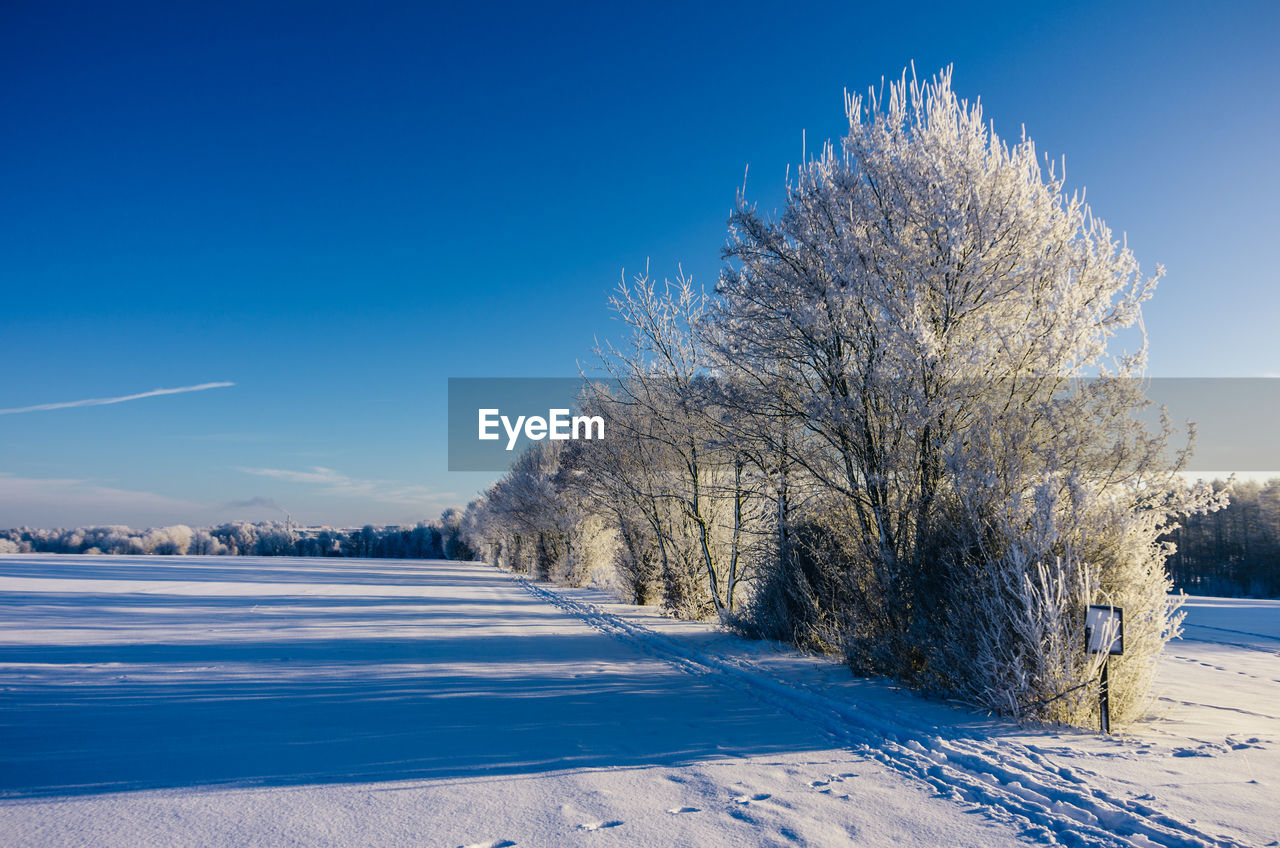 Snow Covered Trees On Field Against Blue Sky