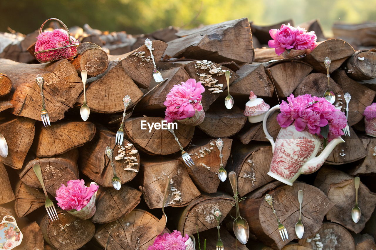 nature, no people, pink color, wood - material, close-up, flower, plant, flowering plant, large group of objects, outdoors, day, leaf, plant part, beauty in nature, tree, freshness, high angle view, vulnerability, dry, brown, flower head, leaves