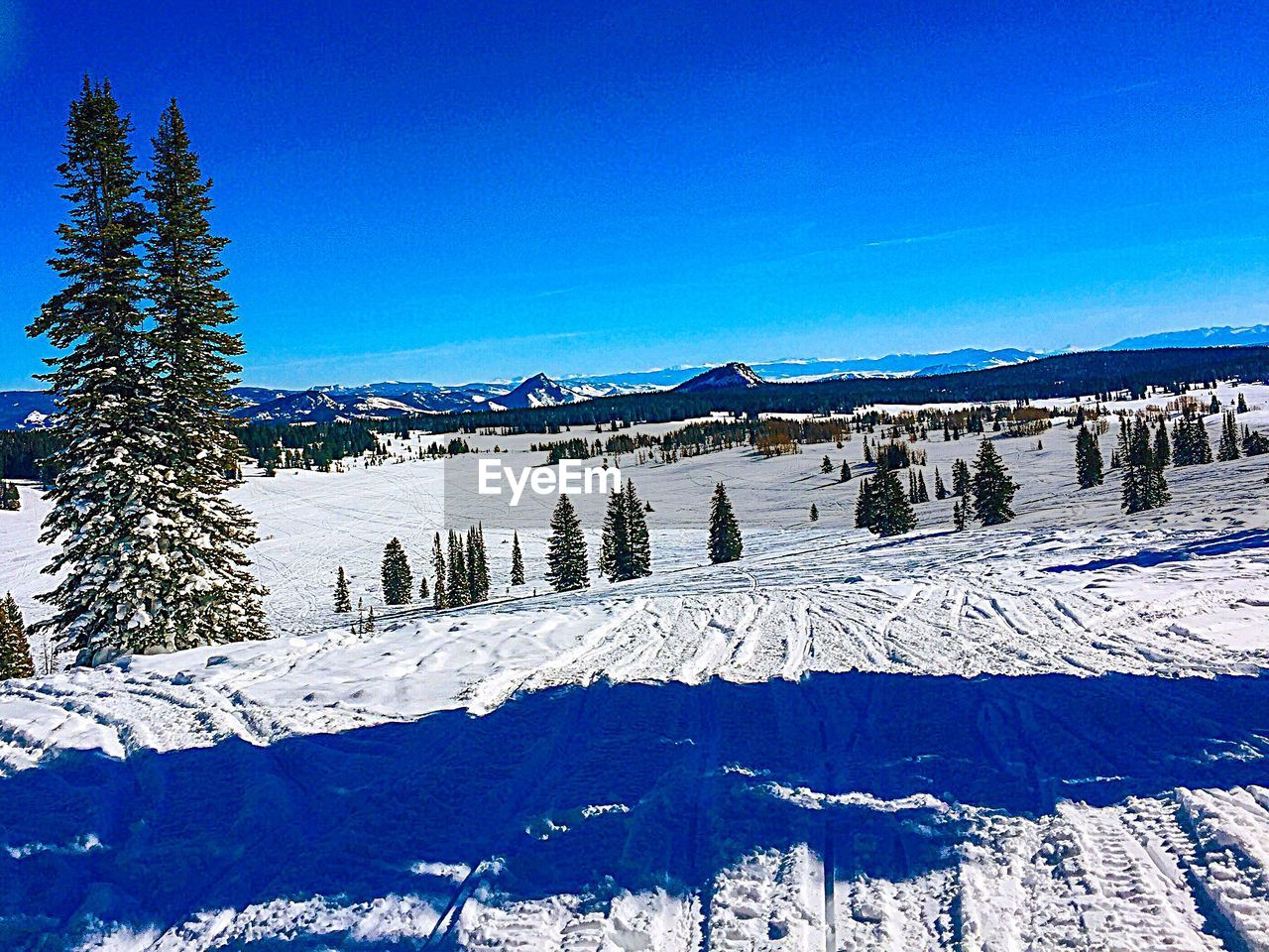 snow, winter, cold temperature, sky, mountain, blue, tree, scenics - nature, beauty in nature, tranquil scene, plant, non-urban scene, tranquility, nature, white color, environment, day, no people, landscape, pine tree, coniferous tree, snowcapped mountain, pine woodland
