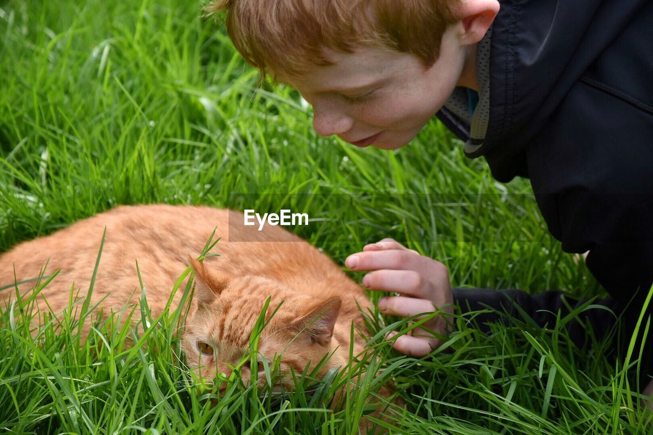 Boy Looking At Ginger Cat Relaxing On Grassy Field