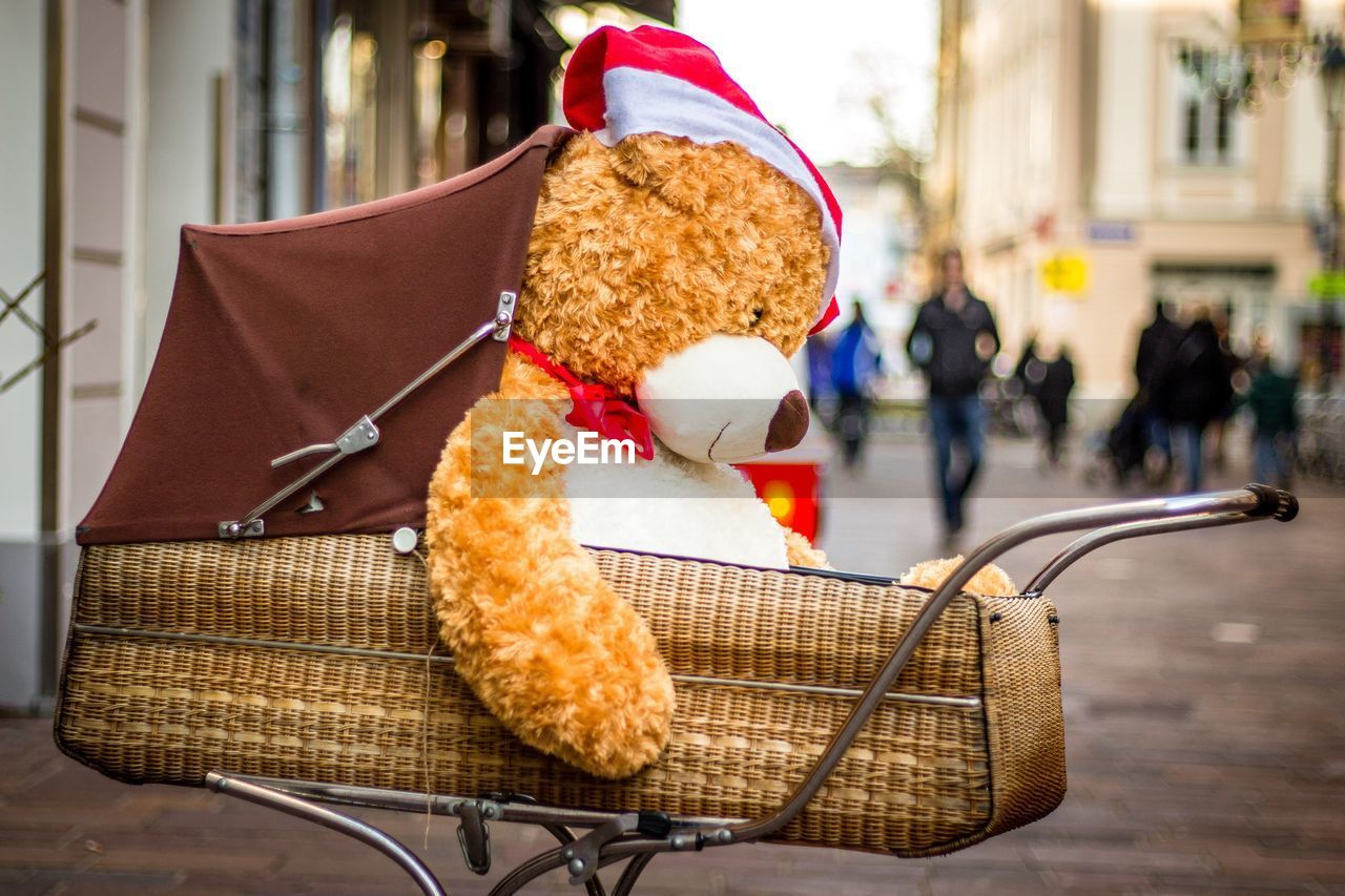 Teddy Bear In Baby Carriage